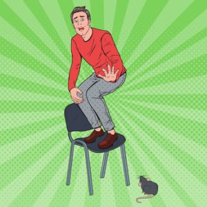 Do You Have an Executive MBA Phobia?